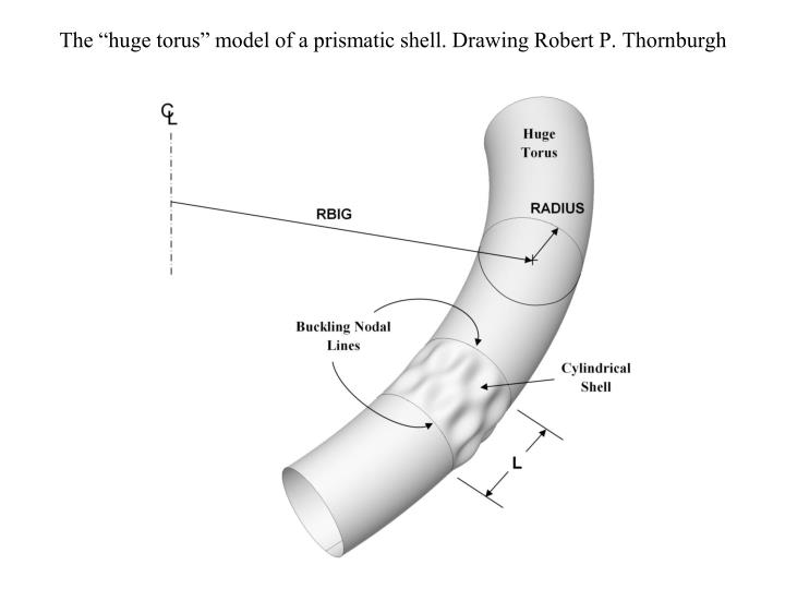 "The ""huge torus"" model of a prismatic shell. Drawing Robert P. Thornburgh"