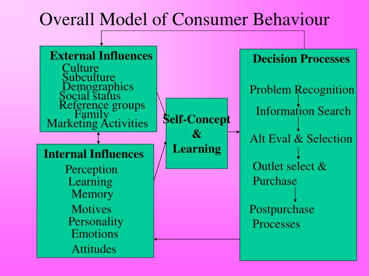Overall Model of Consumer Behaviour