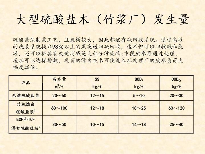 大型硫酸盐木(竹浆厂)发生量