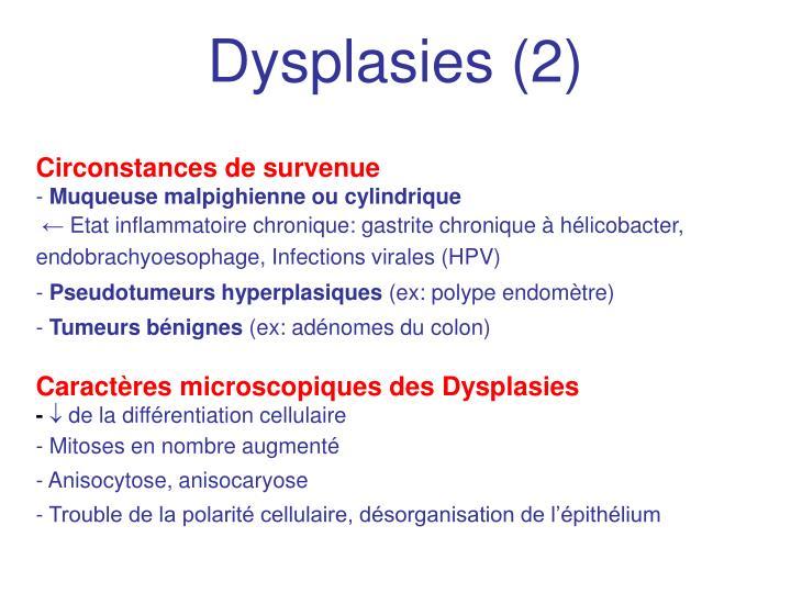 Dysplasies (2)
