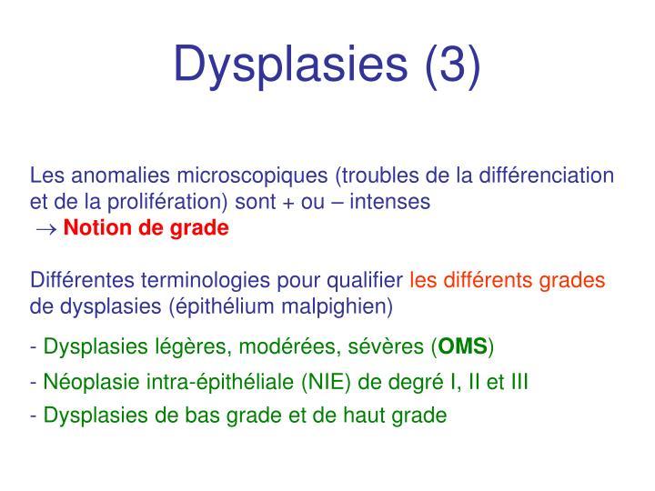 Dysplasies (3)