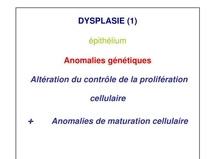 DYSPLASIE (1)