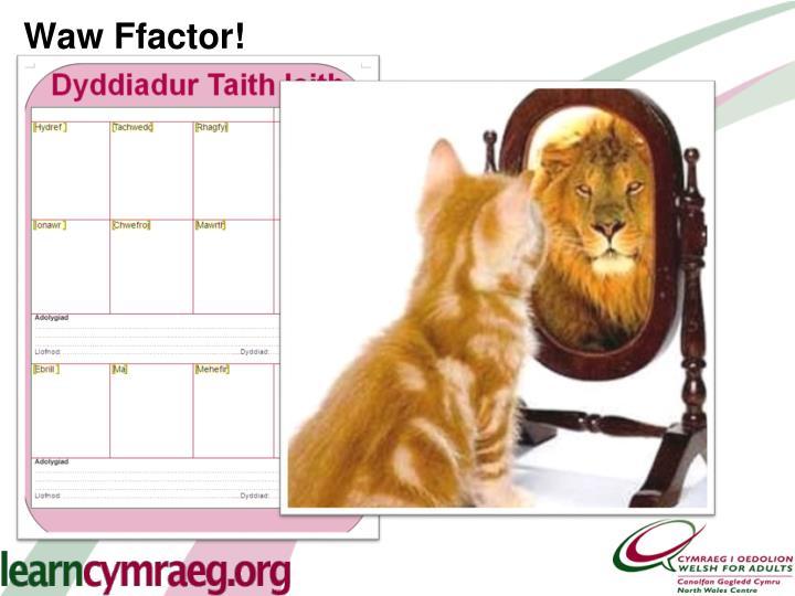 Waw Ffactor!