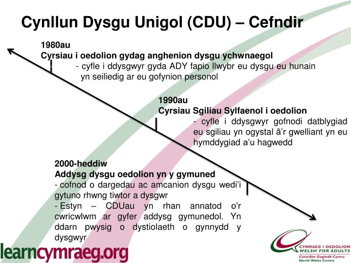 Cynllun Dysgu Unigol (CDU) – Cefndir