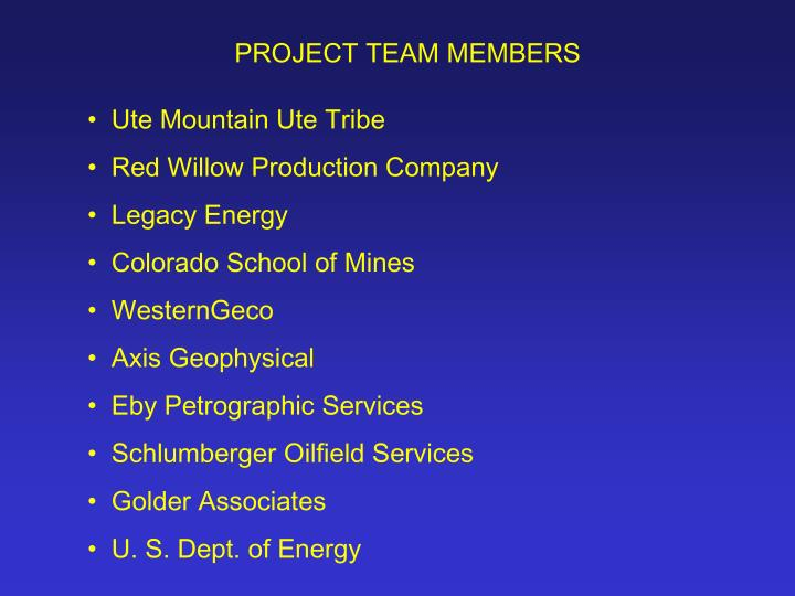 PROJECT TEAM MEMBERS