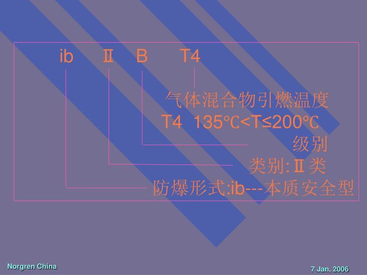 ib     Ⅱ B   T4