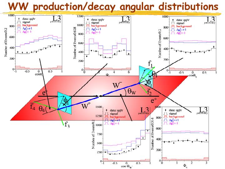 WW production/decay angular distributions