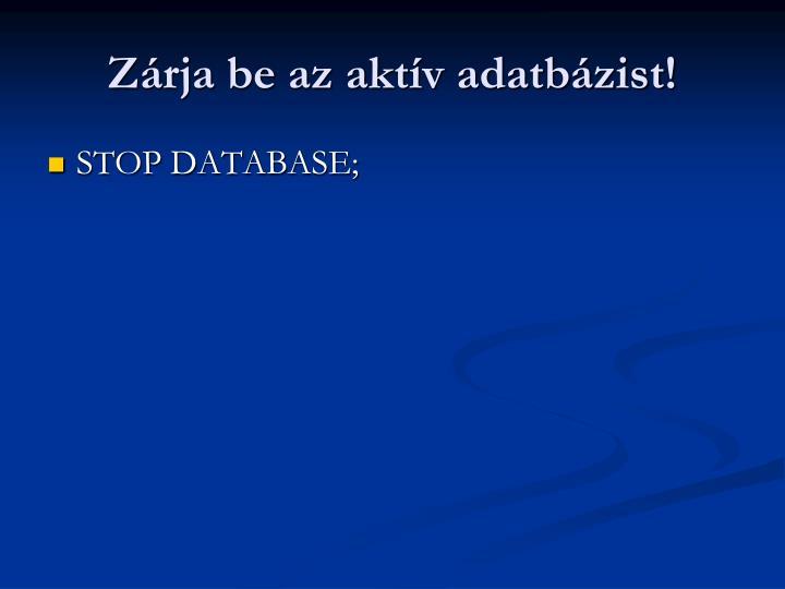 Zrja be az aktv adatbzist!