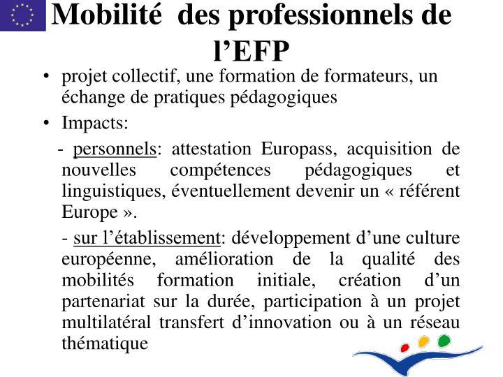 Mobilité  des professionnels de l'EFP