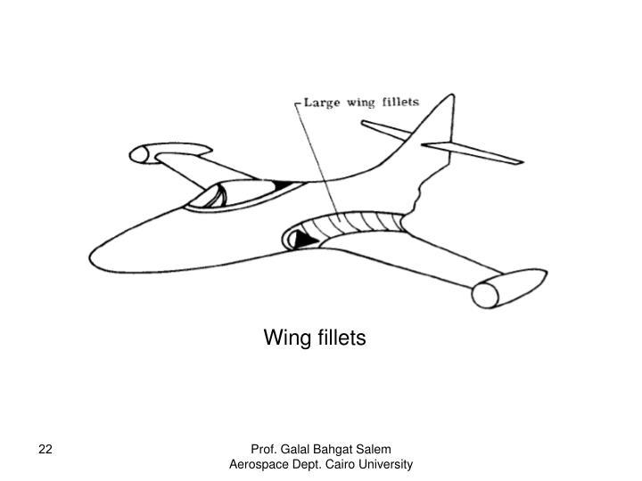 Wing fillets