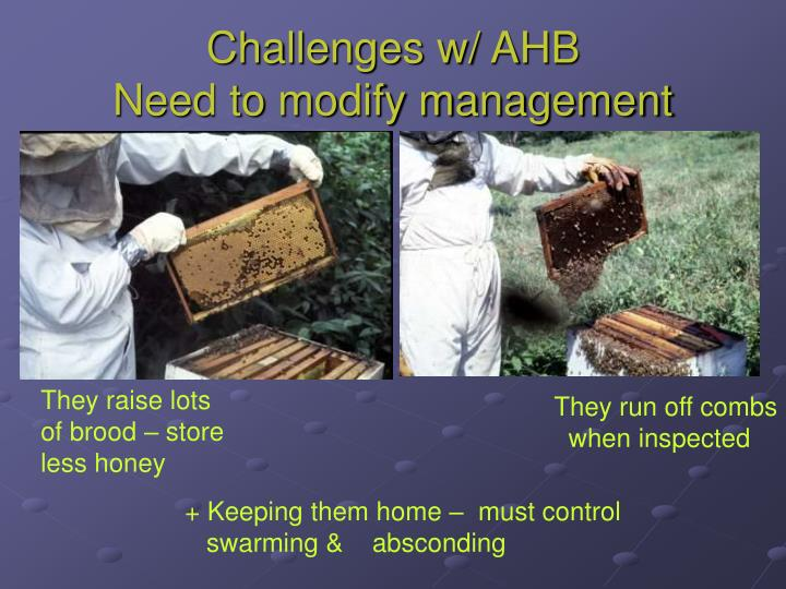 Challenges w/ AHB