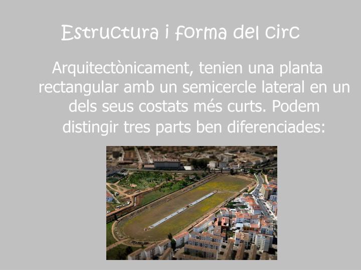 Estructura i forma del circ