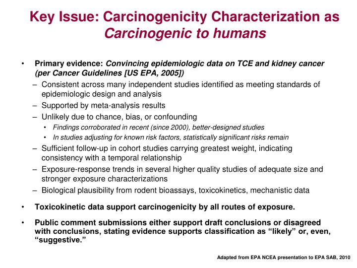 Key Issue: Carcinogenicity Characterization as