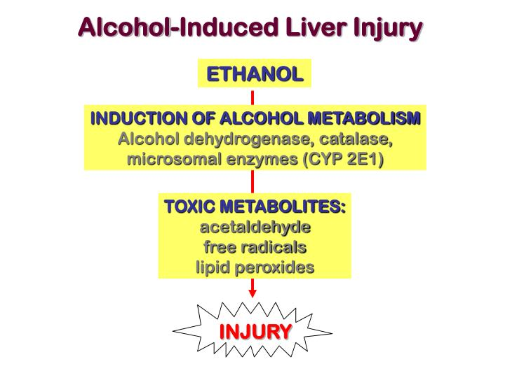 Alcohol-Induced Liver Injury
