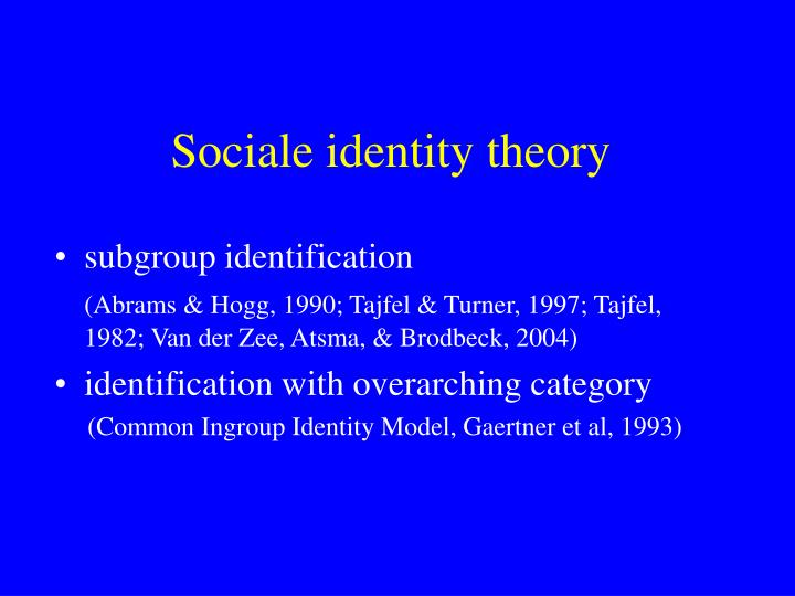 Sociale identity theory