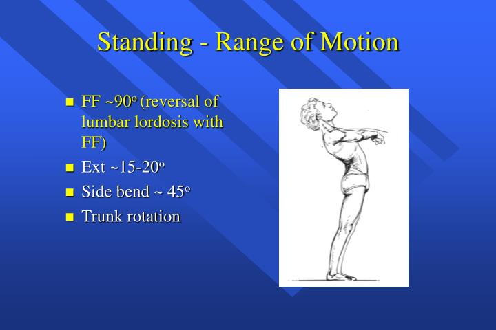 Standing - Range of Motion