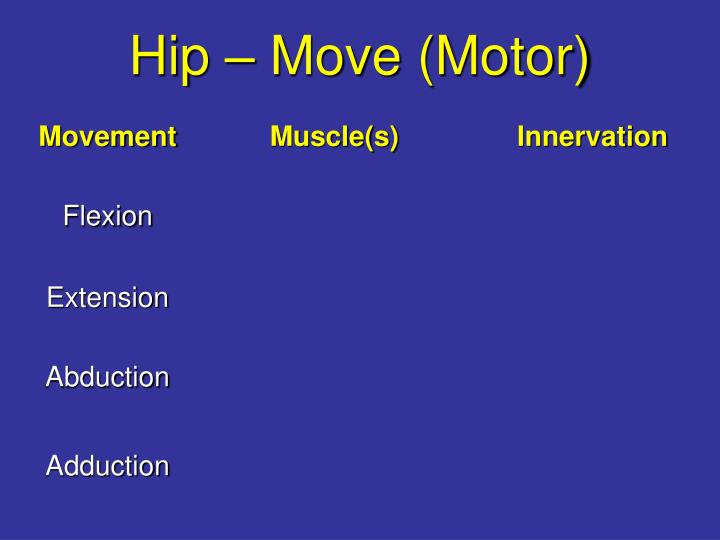 Hip – Move (Motor)
