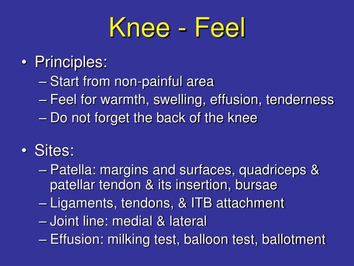 Knee - Feel