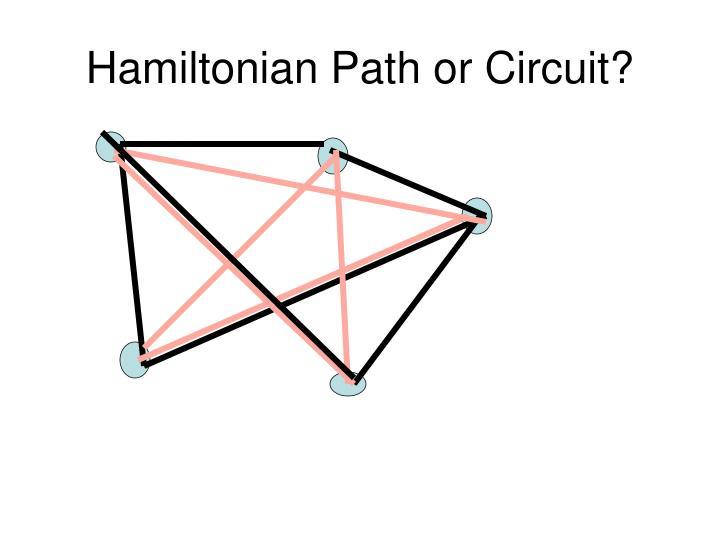 Hamiltonian Path or Circuit?