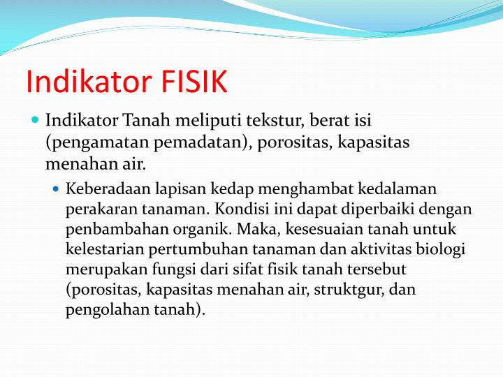 Indikator FISIK
