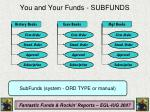 you and your funds subfunds