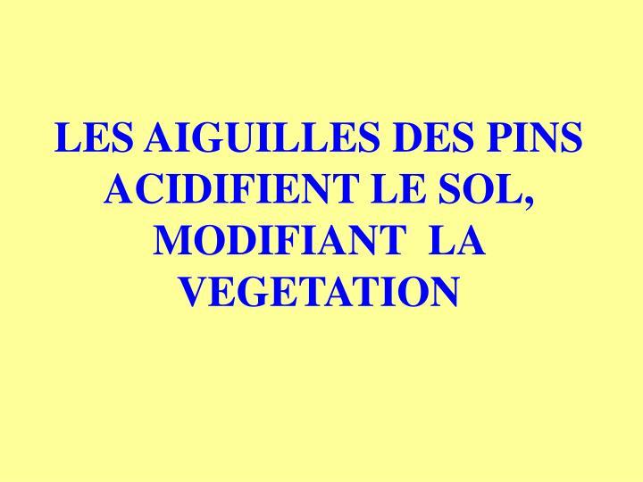 LES AIGUILLES DES PINS ACIDIFIENT LE SOL, MODIFIANT  LA VEGETATION