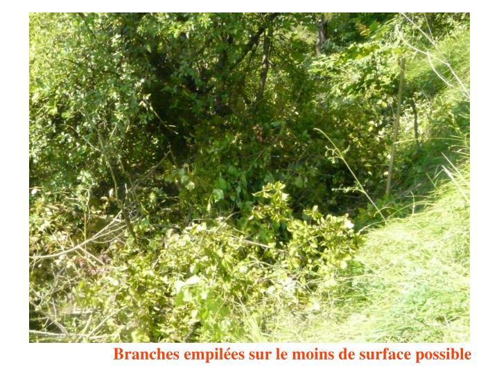 Branches empilées sur le moins de surface possible