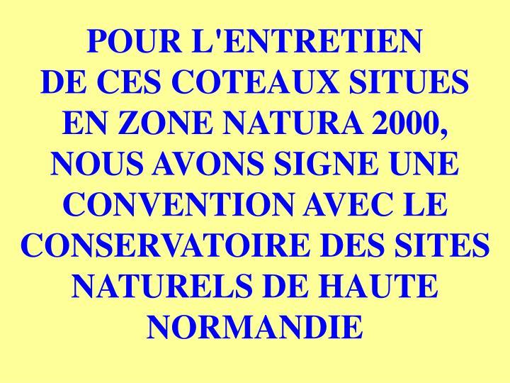 POUR L'ENTRETIEN              DE CES COTEAUX SITUES   EN ZONE NATURA 2000,         NOUS AVONS SIGNE UNE CONVENTION AVEC LE CONSERVATOIRE DES SITES NATURELS DE HAUTE NORMANDIE