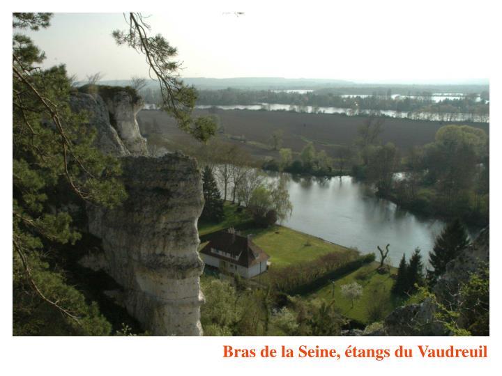 Bras de la Seine, étangs du Vaudreuil