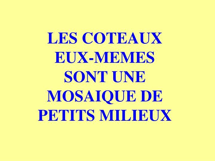 LES COTEAUX EUX-MEMES SONT UNE MOSAIQUE DE PETITS MILIEUX