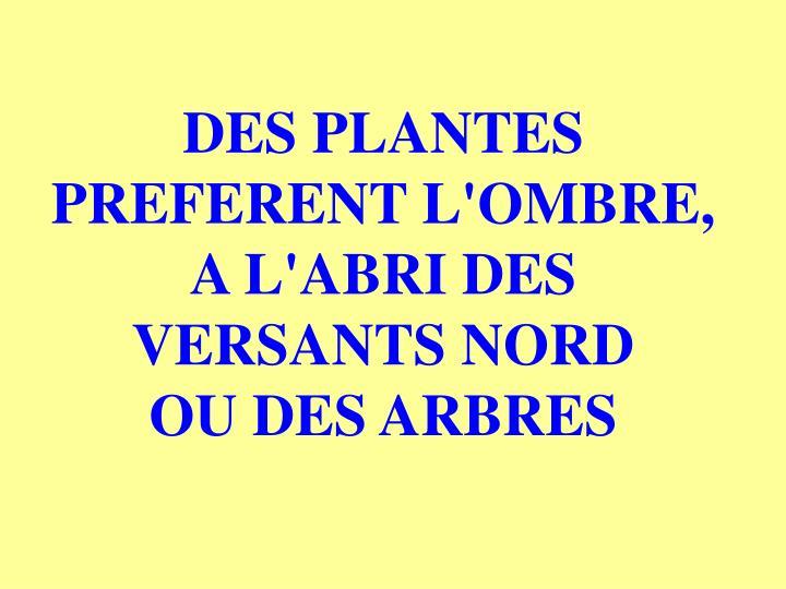 DES PLANTES PREFERENT L'OMBRE, A L'ABRI DES VERSANTS NORD        OU DES ARBRES