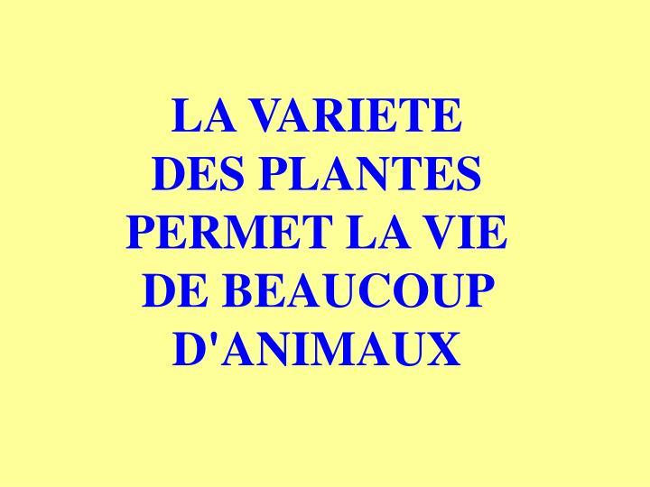 LA VARIETE            DES PLANTES PERMET LA VIE      DE BEAUCOUP D'ANIMAUX