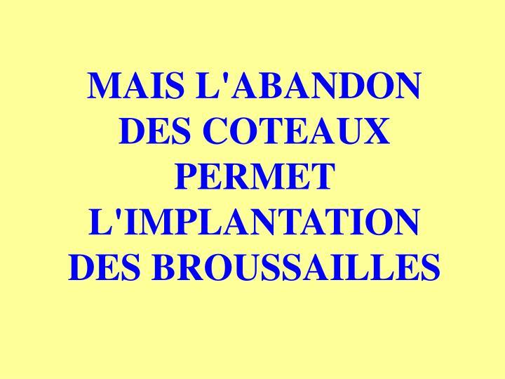 MAIS L'ABANDON DES COTEAUX PERMET L'IMPLANTATION DES BROUSSAILLES