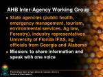 ahb inter agency working group