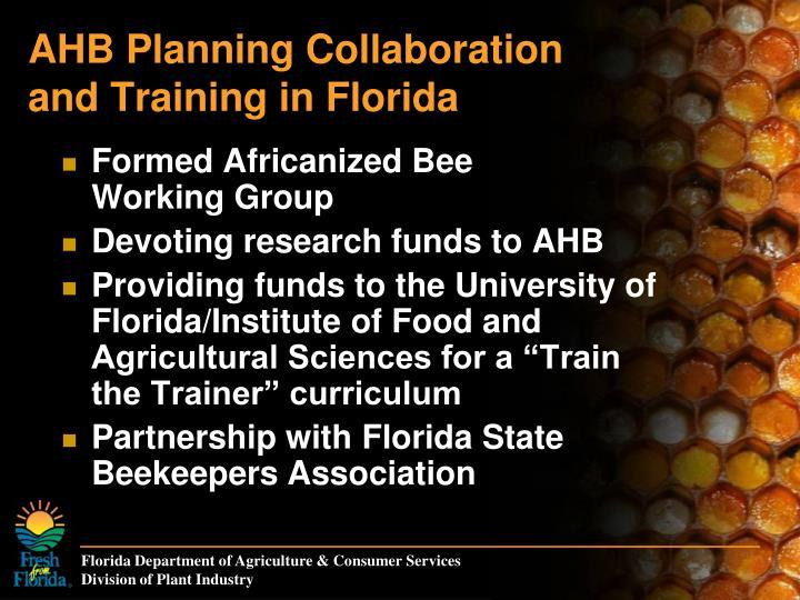 AHB Planning Collaboration