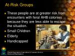 at risk groups1