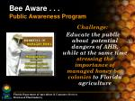 bee aware public awareness program