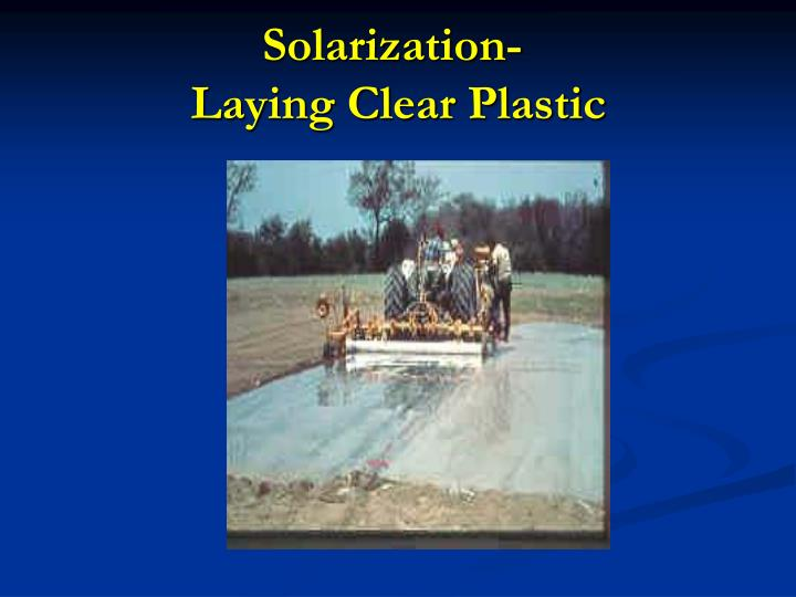 Solarization-