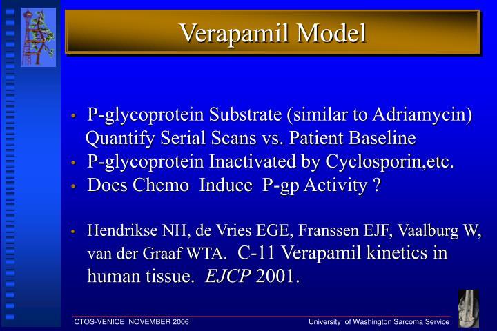 Verapamil Model