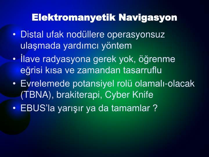 Elektromanyetik Navigasyon