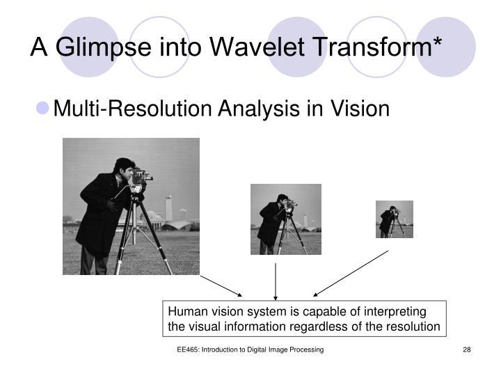 A Glimpse into Wavelet Transform*