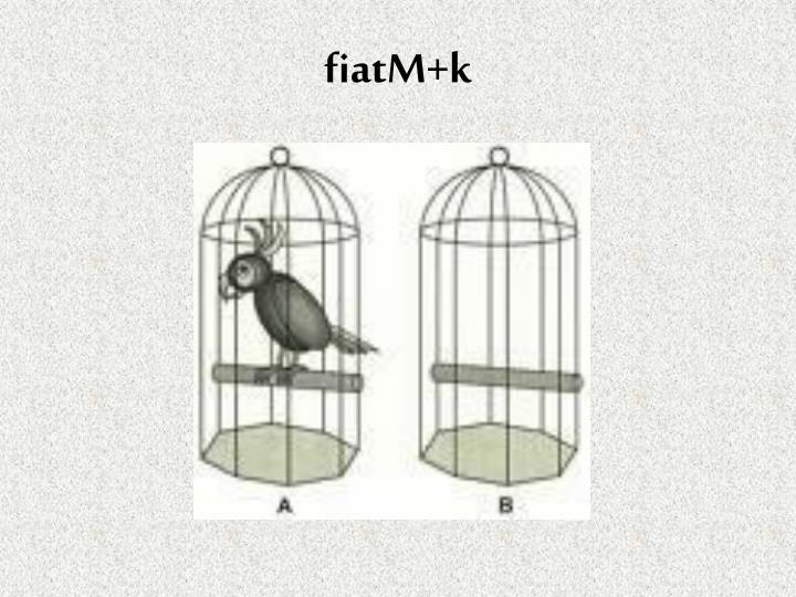 fiatM+k