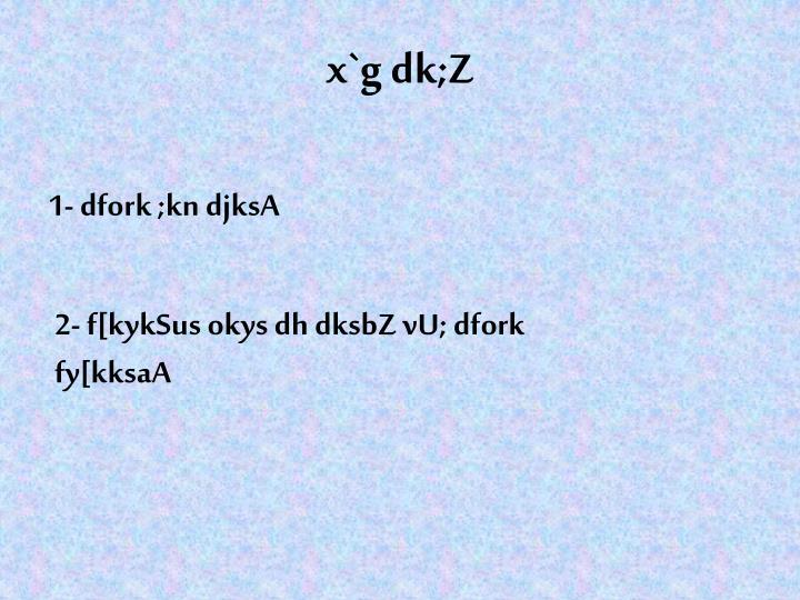 x`g dk;Z