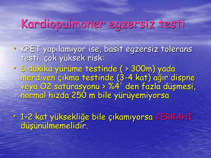 Kardiopulmoner egzersiz testi