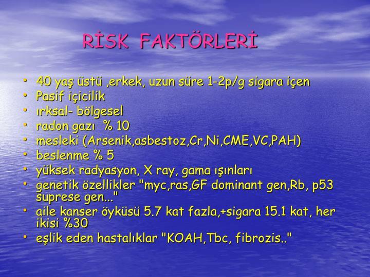 RSK  FAKTRLER