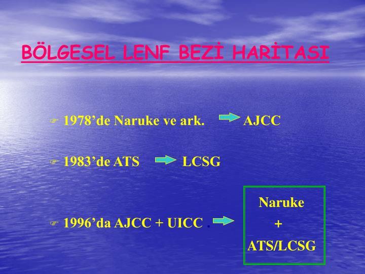 BLGESEL LENF BEZ HARTASI