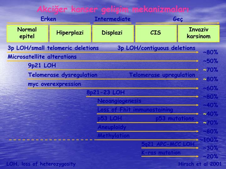 Akcier kanser geliim mekanizmalar