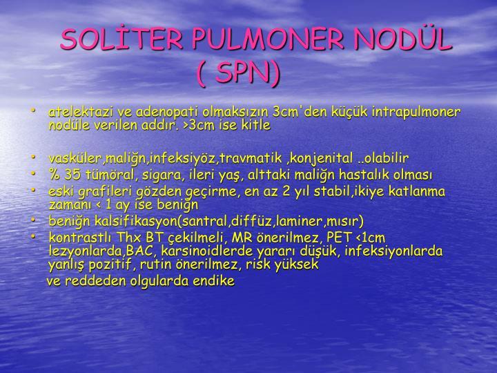 SOLTER PULMONER NODL