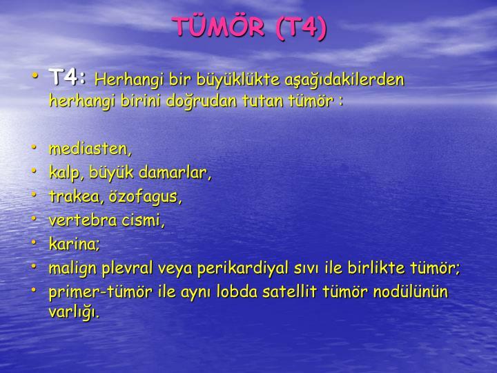TMR (T4)