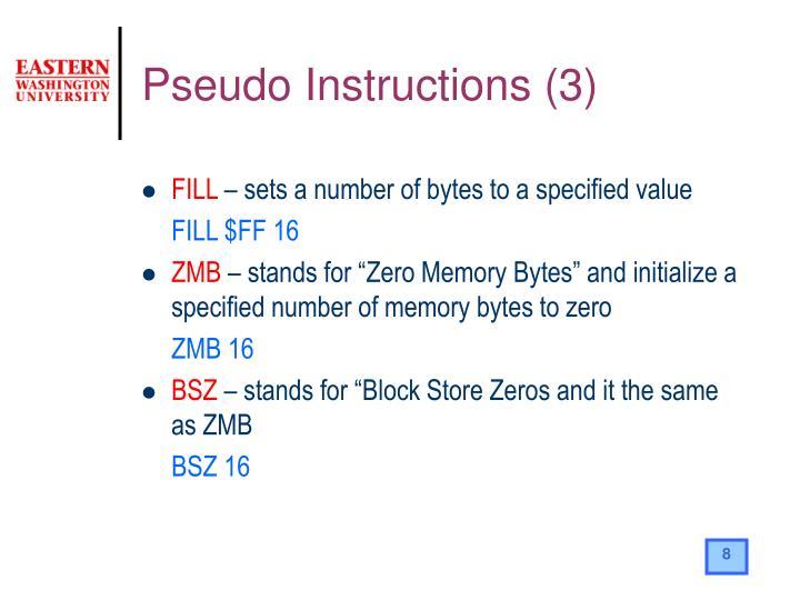 Pseudo Instructions (3)